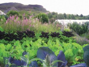 SEER-Garden