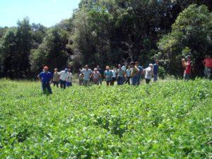 Brazil farmer research: AS-PTA workshop in Brazil. Photo from LEISA Magazine.