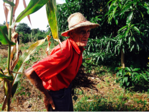 An elder still able to participate in the cooperative.