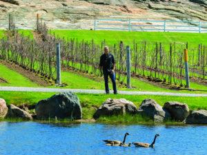 Sandor Johnson next to the water on his vineyard