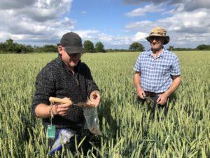 Glyn Mitchell in the field during a Soil Regen Course, June 2019