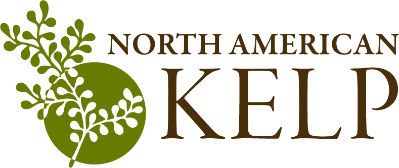 North American Kelp