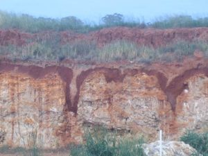 Cross section of red soils, visible where ground has been dug away in a field