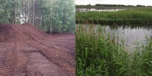 Side by side comparison of before and after peatland restoration